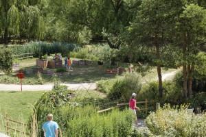 jardin-des-sens-groupes-paysage-1-ConvertImage (1)