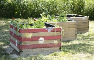 jardin-sens-jardiniere--3-ConvertImage